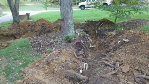 Digging and trenching around trees damages their root system.
